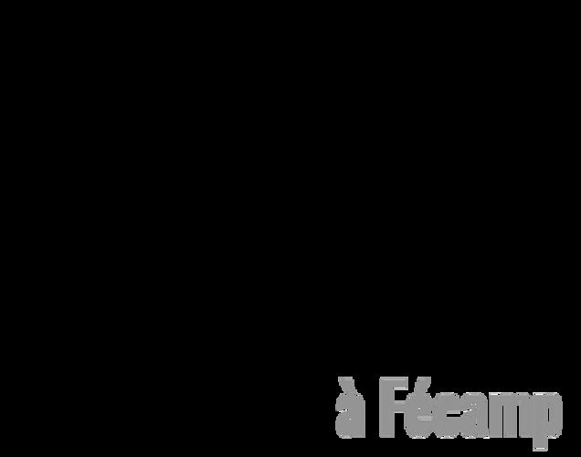 Site internet vitrine- Les gites de Sophie à Fécamp ( 76) 0